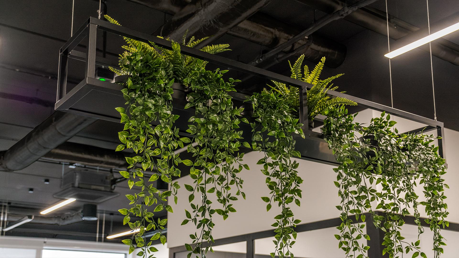 Wiszące kwietniki zostały zaprojektowane specjalnie dla open space naszego klienta. Ich prosta forma doskonale eksponuje rośliny w biurowym wnętrzu.